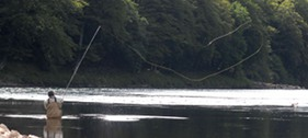 salmon fishing pic4
