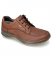 Livingston Lace Shoe Brown