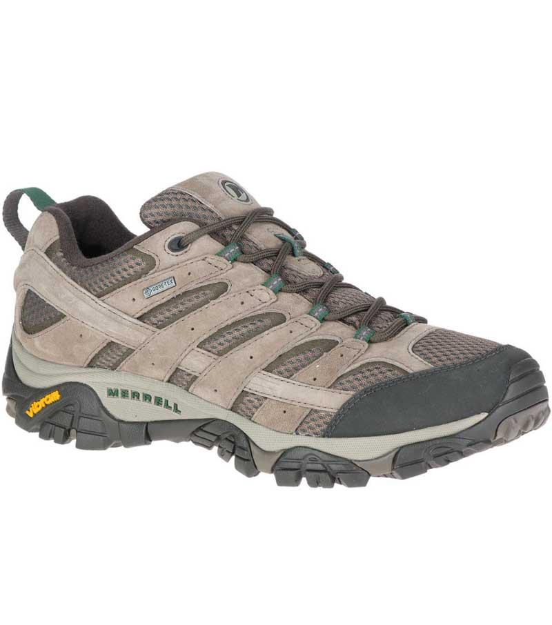 Moab 2 GTX Shoe