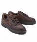 Barracuda Gore-Tex Shoe Brown