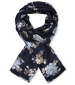 Along Scarf Arctic